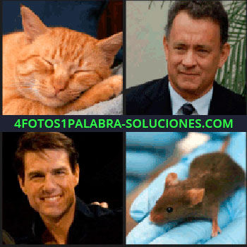 4 Fotos 1 Palabra - Tom Cruise, Tom Hanks, actores, gato ratón