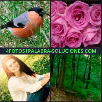4 Fotos 1 Palabra - Pájaro, mujer sonriendo. rosas bosque