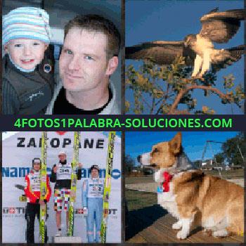 4 Fotos 1 Palabra - Padre son su hijo en brazos. águila. Competición de esquí. Perro sentado