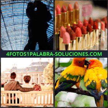 4 Fotos 1 Palabra - silueta pareja. Pintalabios. Pareja sentada en banco. Pareja de loros enamorados