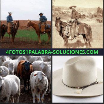4 Fotos 1 Palabra - vaqueros. Jinete a caballo. Ganado de vacas. Sombrero vaquero
