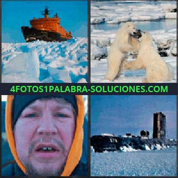 4 Fotos 1 Palabra - barco rompehielos, Osos polares peleando, Hombre con frío, Submarino