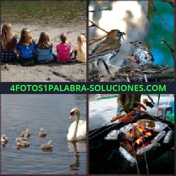 4 Fotos 1 Palabra - Niños mirando un lago, barbacoa, asando salchichas - cisne pájaros que estabas buscando.