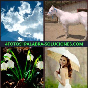 4 Fotos 1 Palabra - caballo nubes , flores, mujer con paraguas, sombrilla, caballo nubes