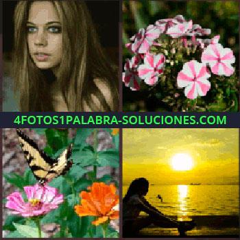 4 Fotos 1 Palabra - mujer guapa. Flores. Mariposa. Atardecer en el mar