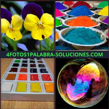4 Fotos 1 Palabra - Dos flores amarillo y violeta, polvos de colores, burbuja con reflejos de colores, paleta de colores