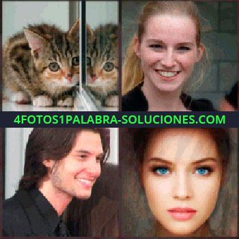 4 Fotos 1 Palabra - gatito frente al espejo. Señorita sonriendo. Joven con sonrisa. Mujer ojos azules