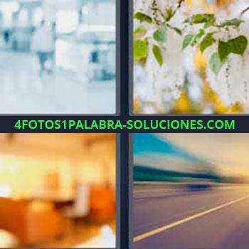4 Fotos 1 Palabra - tres-letras imágenes turbias. Día nublado o con bruma. Hojas de árbol heladas. Carretera velada o grisácea.