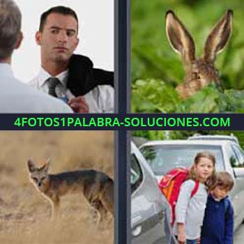 4 Fotos 1 Palabra - orejas de conejo. Hombre con traje. Zorro. Niños cruzando la calle.