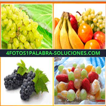 4 Fotos 1 Palabra - racimo de uvas, uvas negras, bandeja de frutas
