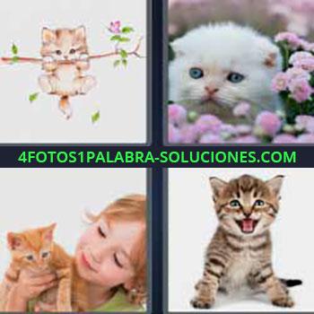 4 Fotos 1 Palabra - cuatro-letras gatos. Dibujo de un gato en una rama. Gato blanco entre flores rosas. Niña con gato. Pequeño gato maullando.
