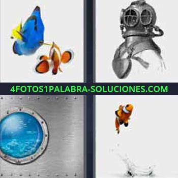 4 Fotos 1 Palabra - peces. Pez azul y otro naranja. Escafandra antigua de buzo. Ventanilla redonda de un submarino. Pez payaso naranja con rayas blancas y negras.