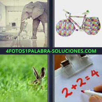 4 Fotos 1 Palabra - ocho-letras elefante en el interior de una tienda. Bicicleta ruedas colores. Conejo o liebre en la hierba. 2 + 2 = 4.