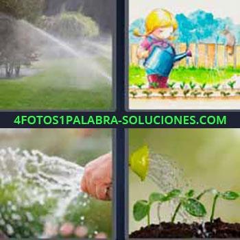 4 Fotos 1 Palabra - siete-letras agua plantas. Regando césped o pasto. Dibujo niña con regadera. Manguera de agua. Hombre regando las plantas.