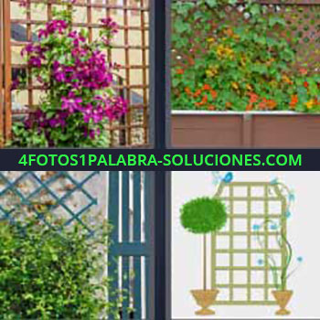 4 Fotos 1 Palabra - cuatro-letras flores plantas en vallas verticales. Flores lilas. Pequeño jardín vertical. Enrejado con vegetación.
