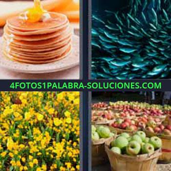 4 Fotos 1 Palabra - tortitas. Fondo marino. Flores amarillas. Muchas cestas de manzanas rojas y verdes.