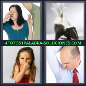 4 Fotos 1 Palabra - mujer oliendo axila. Mofeta. Niña tapándose la nariz. Señor con camisa sudada.