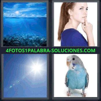 4 Fotos 1 Palabra - pájaro azul, Mar, Mujer de azul, Cielo, Periquito azul.