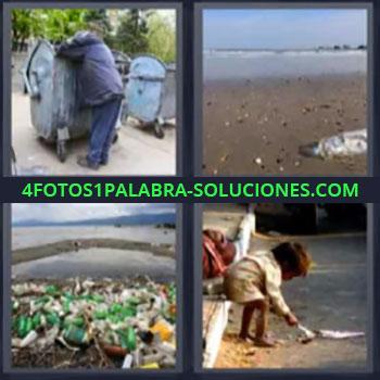 4 Fotos 1 Palabra - cinco-letras contaminacion. Mendigo o indigente. Pez muerto. Contaminacion. Niña pobre.