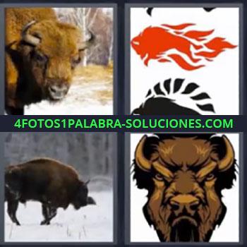4 Fotos 1 Palabra - siete-letras bufalo, Dibujo con llamas de fuego, Animal en la nieve, Dibujo de especie de toro.