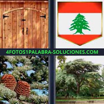 4 Fotos 1 Palabra - seis-letras bandera de Líbano con árbol verde. Puerta de madera. Piñas de un pino. Bosque.