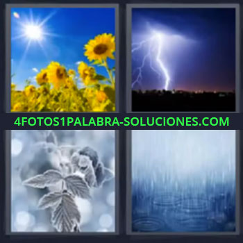 4 Fotos 1 Palabra - siete-letras girasoles rayo, Lluvia, Chaparron
