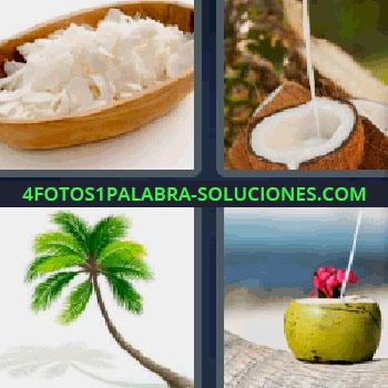 4 Fotos 1 Palabra - palmera o cocotero, leche de coco, medio coco partido, bebida, ralladura de algo blanco.