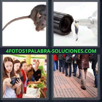 4 Fotos 1 Palabra - pegamento, ratón, fila de gente en una tienda, gente por la calle.