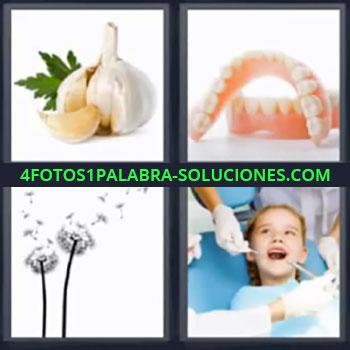 4 Fotos 1 Palabra - seis-letras ajo dentadura, Cabeza de ajo, Dentadura postiza, Planta con pétalos volando, Niño en el dentista.