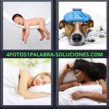 4 Fotos 1 Palabra - seis-letras bebe en hamaca, Perro con bolsa azul en cabeza, Mujer acostada en cama blanca, Mujer dormida.