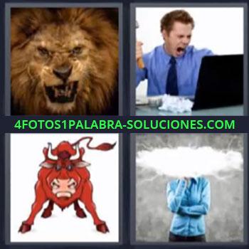 4 Fotos 1 Palabra - seis-letras leon toro, Ejecutivo furioso, Dibujo de toro bravo