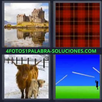 4 Fotos 1 Palabra - seis-letras castillo cuadrados, Vaca de las Highlands en la nieve, Dibujo con verde y azul.