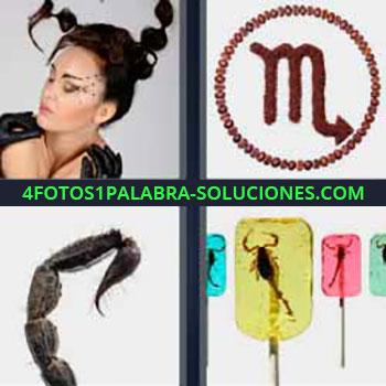 4 Fotos 1 Palabra - mujer coletas o trenzas. Dibujo con M. Aguijón alacrán. Insectos que pican en plásticos.
