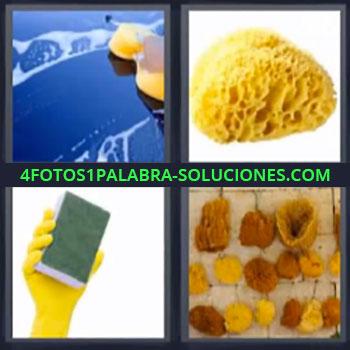 4 Fotos 1 Palabra - seis-letras limpia parabrisas, Estropajo de limpieza.
