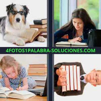 4 Fotos 1 Palabra - niño con libros. Perro con libros. Mujer leyendo. Niña haciendo tareas. Montón de libros en los brazos.