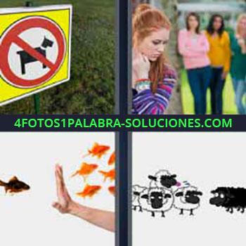 4 Fotos 1 Palabra - siete-letras cartel perro prohibido. Mujer pelirroja y amigas. Peces. Ovejas blancas y una negra.