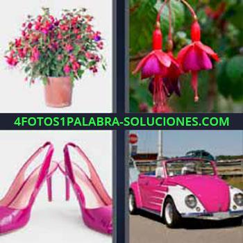 4 Fotos 1 Palabra - seis-letras flores rosas. Zapatos con tacones rosas. Carro bocho o escarabajo volkswagen rosa.