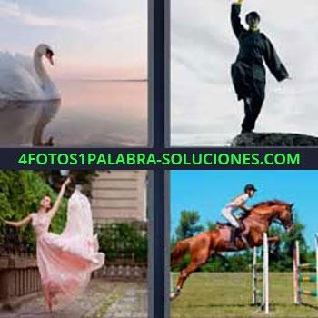 4 Fotos 1 Palabra - seis-letras cisne en lago. Hombre artes marciales. Karateka. Bailarina. Salto de caballo.