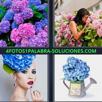 4 Fotos 1 Palabra - ocho-letras flores lilas y rosas. Mujer oliendo flores. Flor en la cabeza. Regadera con flores.
