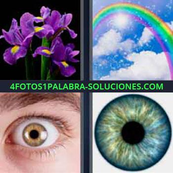 4 Fotos 1 Palabra - siete-letras flores violetas. Arcoíris en el cielo. Ojo abierto. Ojo azul pupila.