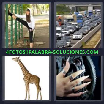 4 Fotos 1 Palabra - seis-letras gimnasia, Atasco coches, Jirafa, Uñas postizas largas