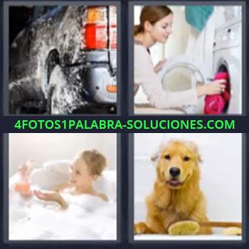 4 Fotos 1 Palabra - siete-letras lavadora, Limpiando carro o coche, Mujer en la tina bañándose, Perro