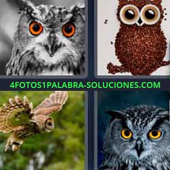 4 Fotos 1 Palabra - ocho-letras búho volando. Aves de ojos grandes. Dibujo de un búho. Cuatro imágenes de búhos.