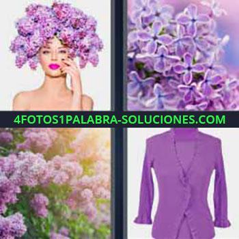 4 Fotos 1 Palabra - seis-letras flores moradas. Plantas con flores. Vestido rosa.