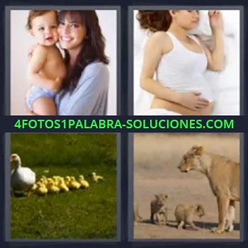 4 Fotos 1 Palabra - siete-letras leona con cachorros, Pata con sus patitos, Mujer embarazada, Mujer con bebe en brazos