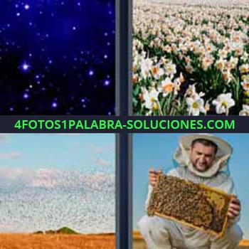 4 Fotos 1 Palabra - ocho-letras estrellas flores. Universo. Campo de flores blancas. Miles de pájaros. Apicultor con abejas.