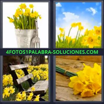 4 Fotos 1 Palabra - ocho-letras flores amarillas, Maceta con flores, Campo de flores y cielo azul, Tienda de flores, Ramo de flores amarillas.