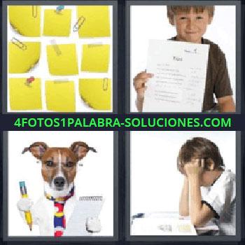 4 Fotos 1 Palabra - perro con lápiz y libreta, notas amarillas, niño con boletín de calificaciones, niño estudiando.