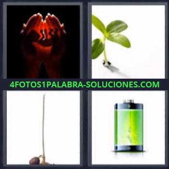 4 Fotos 1 Palabra - ocho-letras bateria verde, Brote verde, Germen, Manos rojas con bebe.