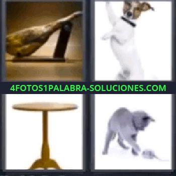 4 Fotos 1 Palabra - seis-letras jamón, perro, mesa, gato jugando con un ratón.